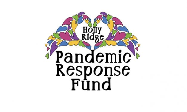 Help for Holly Ridge Businesses