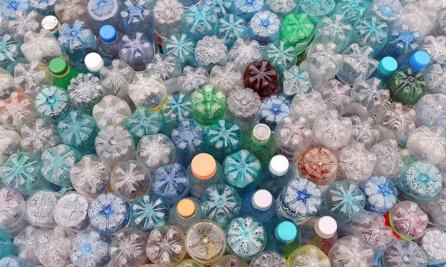 Plastic Free July – How You Can Creatively Reuse and Recycle