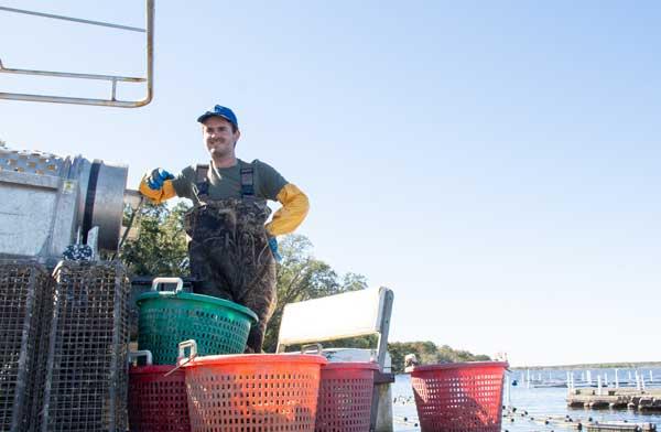 Stump Sound Oyster Farm Sneads Ferry NC