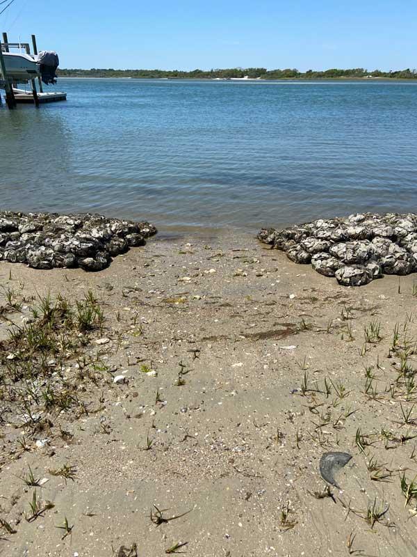 Living Shoreline Topsail Beach NC